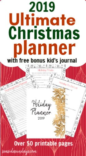 image about Free Printable Christmas Planner known as 2019 Printable Xmas Planner