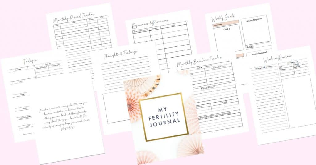 printable fertility journal