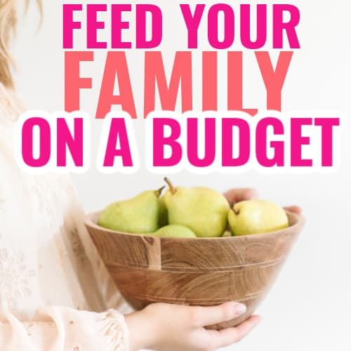 How to feed a family on a budget